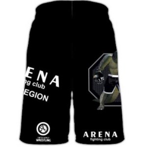 Шорты ARENA fighting club CW72