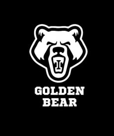 Спортивний клуб Golden Bear Pankration